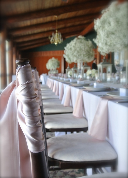 blush napkins and sashes
